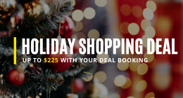 Holiday Shopping Deal
